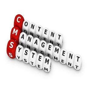 Cmsهای اختصاصی-سیستم مدیریت محتوا